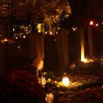 All Saints' Day in Poland – Wszystkich Swietych